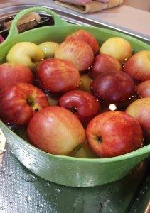 りんごの酵素-2